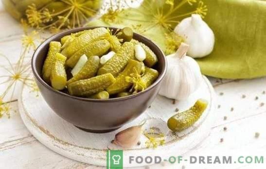 Oogst - verliesvrij: snelle recepten bij het afvallen van komkommers. Vintage geheimen en moderne recepten ingelegde komkommers