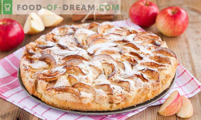 Hoe bak je appelgebak in de oven, recepten