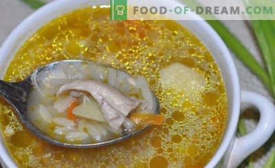 Augurk met rijst en augurken, recepten met vis, champignons, tomatenpuree