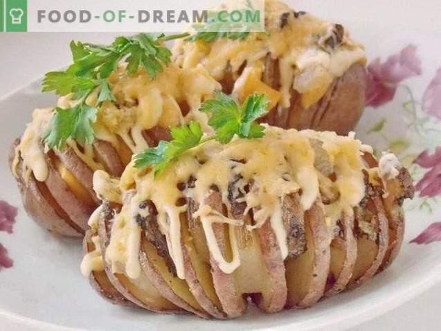 Aardharmonica. Gebakken aardappelen met spek onder kaaskorst