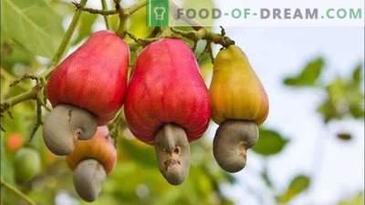 15 vruchten die we eten, maar niet weten hoe ze groeien