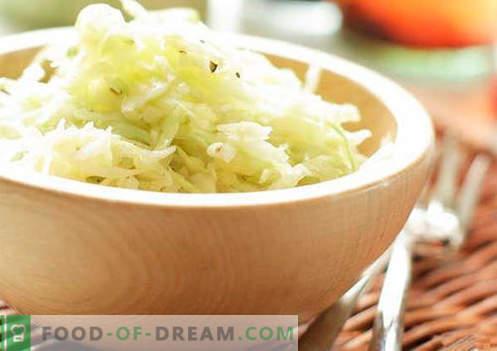 koolsalade met azijn - een selectie van de beste recepten. Correct koken van koolsalade met azijn.
