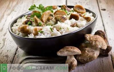 Mushroom risotto - the secrets and subtleties of cooking Italian dishes. Recipes for delicious risotto with mushrooms