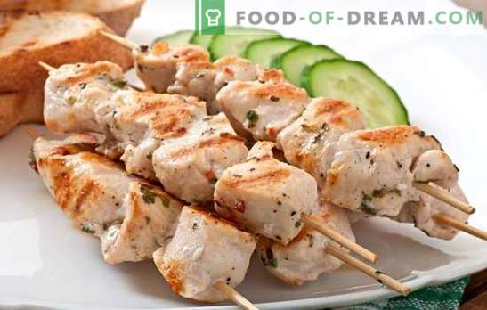 Spiesjes aan spiesjes in de oven van varkensvlees - de aroma's van de zomer. Kebab-recepten op spiesjes in varkensoven in huls, in folie, in pot