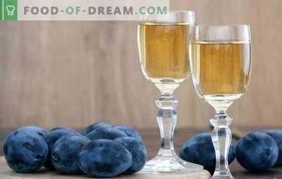 Pruimenwijn thuis: weet niet hoe - wij zullen lesgeven! Kenmerken van de bereiding van deze wijn uit pruim thuis