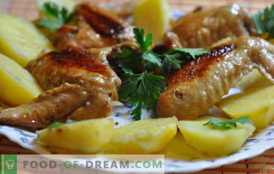 Kippenvleugels met aardappelen in de oven - budget! Recepten voor kippenvleugeltjes met aardappelen in de oven: in het Italiaans, in bier, etc.