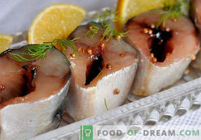 Pittige makreel - de beste recepten. Hoe goed en smakelijk gekruide makreel koken.