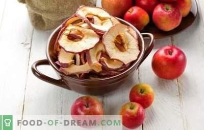 Come asciugare le mele a casa è una soluzione semplice per la raccolta estiva. Cosa cucinare dalle mele essiccate a casa?