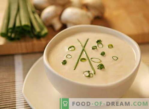 Roomsoep - de beste recepten. Hoe crèmesoep goed te bereiden en te koken.