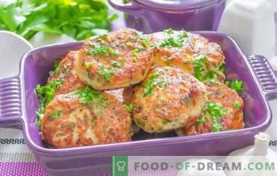 Vissnoekjes: in de oven, multikoker, in de pan. De beste recepten voor stevige viskoekjes van snoek met kool, spek, peper