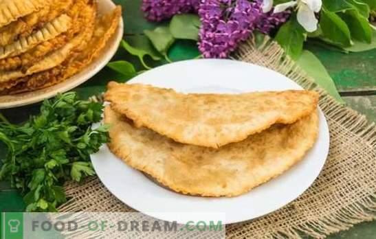 Chebureks zelfgemaakt met vlees: een stapsgewijs recept voor heerlijke gebakjes. Geheimen en stap-voor-stap recepten voor zelfgemaakte vleespasta's met vlees: bereid u voor, verras het gezin!