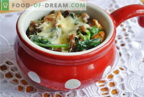 Paddestoel-julienne - de beste recepten. Hoe goed en smakelijk juliens koken met champignons.