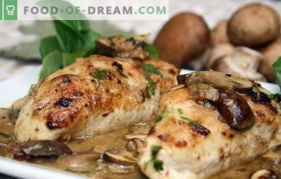 Kipfilet met champignons in de oven is de beste oplossing voor een familiediner. Methoden voor het koken van kippenfilet met champignons in de oven
