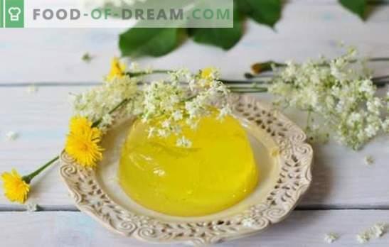 Citroengelei - hartig dessert, dat is altijd de manier. Algemene voorwaarden voor koken en variaties op gerechten op basis van limoengelei
