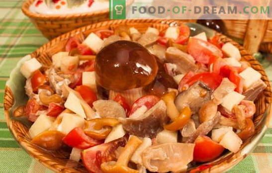 Champignons met tomaten zijn de beste recepten. Methoden voor het bereiden van champignons met tomaten: bakken, koken, sudderen, bakken, marineren