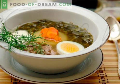 Sorrelsoep - bewezen recepten. Hoe goed en smakelijk zuring soep koken.