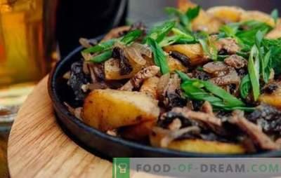 Vlees gebakken met uien in een koekenpan - iedereen is blij! Recepten voor gebakken vlees met uien in een pan met zure room en andere saus