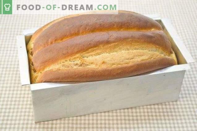 Luipaardbrioche - zoet brood voor kerst