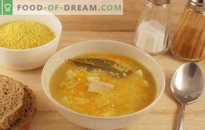 Veldsoep met gierst: de geheimen van de kozakkenkeuken. Recepten soep met gierst met de historische
