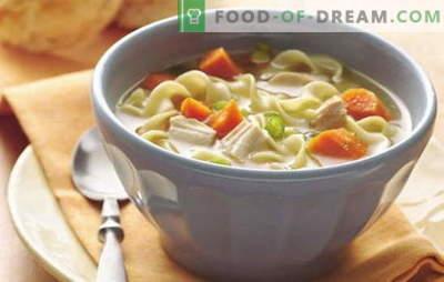 Eenvoudige soepen voor elke dag - 7 beste recepten. Hoe maak je een eenvoudige soep voor elke dag koken: champignons, kip, vis, etc.