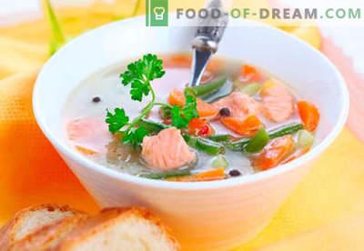 Forelsoepen - bewezen recepten. Hoe je forelsoep goed bereidt en kookt.