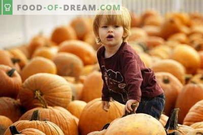 Pompoenpuree voor kinderen - de beste recepten. Hoe naar de juiste en smakelijke pompoenpuree.