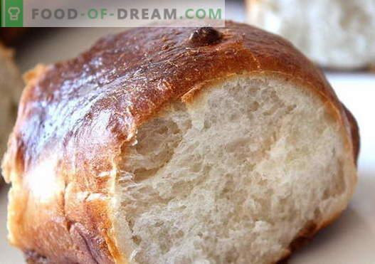 Muffins op kefir - de beste recepten. Hoe kun je goed en smakelijk broodjes maken op yoghurt
