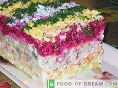 Bont salade - de beste recepten. Hoe goed en smakelijk salade dressing jas.