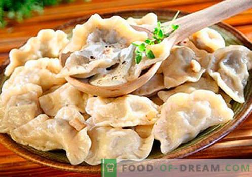 Dumplings met champignons - de beste recepten. Hoe goed en smakelijk thuis knoedels met champignons koken.