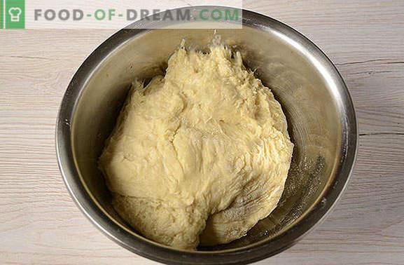 Vergogna della nonna (lussureggiante sottobosco) su kefir