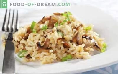Risotto in een multikoker - een gerecht uit Italië. Risotto-recepten in een multikoker met champignons, kip, groenten, spekjes