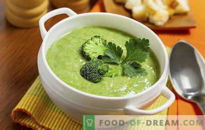Broccoli-roomsoep: recepten voor voeding en basisvoeding. Diverse recepten voor room - soep van eenvoudige tot complexe broccoli