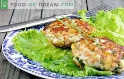 Gehakte kipfilet: de basis van culinaire tradities. Recepten gehakte kipfilet schnitzels voor elke smaak