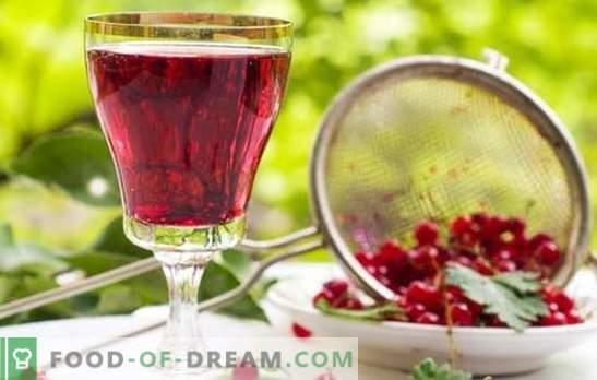 Roter Johannisbeerwein: Die Hauptstufen der Herstellung von Obstweinen. Rezepte für hausgemachte rote Johannisbeerweine