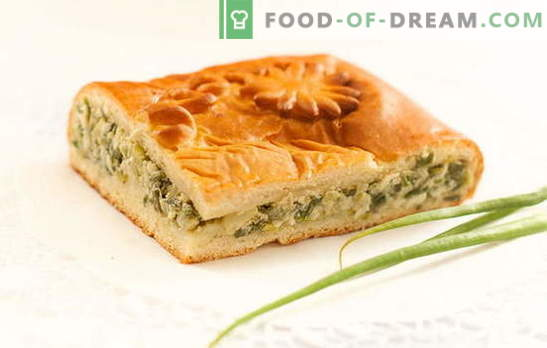 Groene uientaart op yoghurt - heerlijke zelfgemaakte taarten. Recepten voor pastei met groene uien op yoghurt in de oven en multikoker