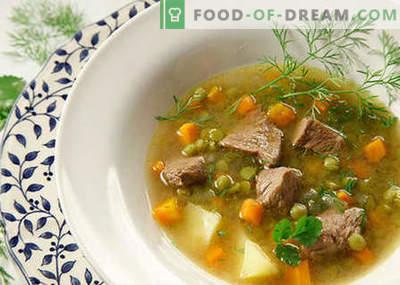 Soepen met vlees - de beste recepten. Hoe goed en smakelijk koken soepen met vlees.