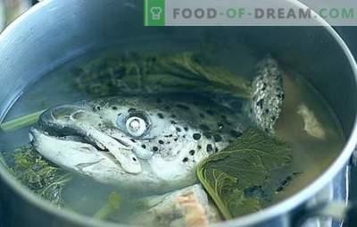 Fishheadsoep - recepten en kooksupetiteiten. Soepen van viskoppen met rijst, gierst, groenten