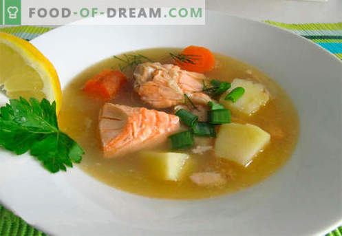Zalmsoep - de beste recepten. Hoe u op de juiste en smakelijke wijze zalmsoep kookt.