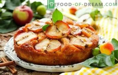 Appeltaart in een slowcooker - een heerlijk en eenvoudig dessert. Verschillende opties van appeltaart in een slowcooker
