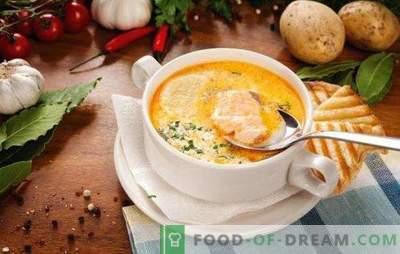 Vissoep - soep met een unieke smaak! Recepten voor verschillende vissoep met ingeblikt voedsel, verse karkassen en filets, kool, bonen