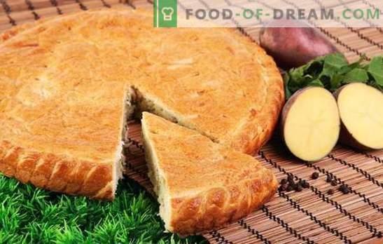 Aardappeltaart met aardappelen - zelfs geen kruimel! Eenvoudige recepten van geleipaste pastei op mayonaise, zure room, kefir en ryazhenka