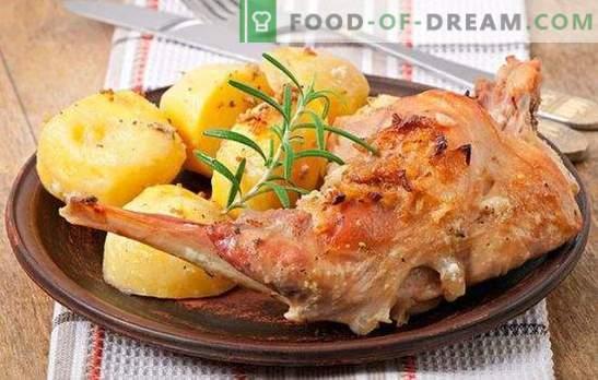 Gerechten van het konijn: snel recept is een betaalbare delicatesse. Gerechten van het konijn - snelle recepten voor lekker en zacht vlees