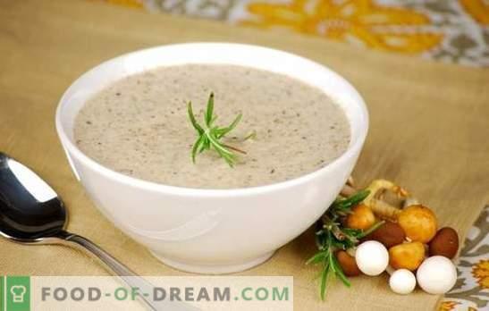 Mushroomroomsoep - populaire recepten. Hoe champignonroomsoep maken in een slowcooker, met room of met kaas