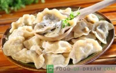 Klassieke dumplings zijn iets! Recepten klassieke dumplings Russische, Georgische, Chinese, Italiaanse en Aziatische keuken