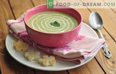 Soep van courgettepuree - ongebruikelijk, maar smakelijk! Recepten soepen, puree courgette, c tomaat, kaas, honing, munt, kip, groenten en champignons