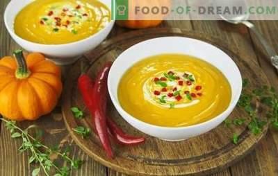 Soep-puree recepten zijn snel en smakelijk - zacht en voedzaam. Hoe crèmesoep te bereiden: recepten voor snelle en smakelijke voorgerechten