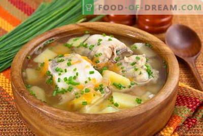 Vissoep - de beste recepten. Hoe kun je goed en lekker vissoep koken.