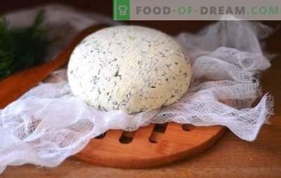 Kefir-kaas thuis - smakelijk, economisch, gezond. Hoe maak je verschillende soorten kefir-kaas thuis