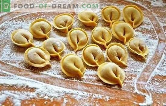 Vond je hoe je knoedels kookt in een slowcooker? Schrijf de methoden voor het koken van dumplings op in een slow cooker