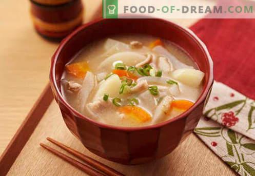 Sojasoep - bewezen recepten. Hoe goed en lekker sojasoep koken.